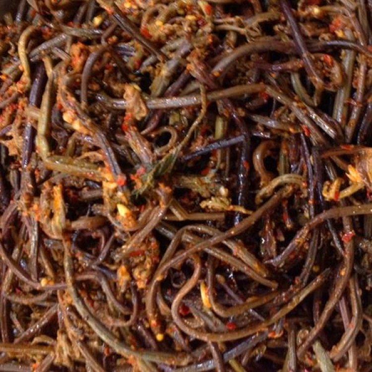 蕨菜200g 朝鲜族手工制作 香辣桔梗泡菜辣拌桔梗咸菜