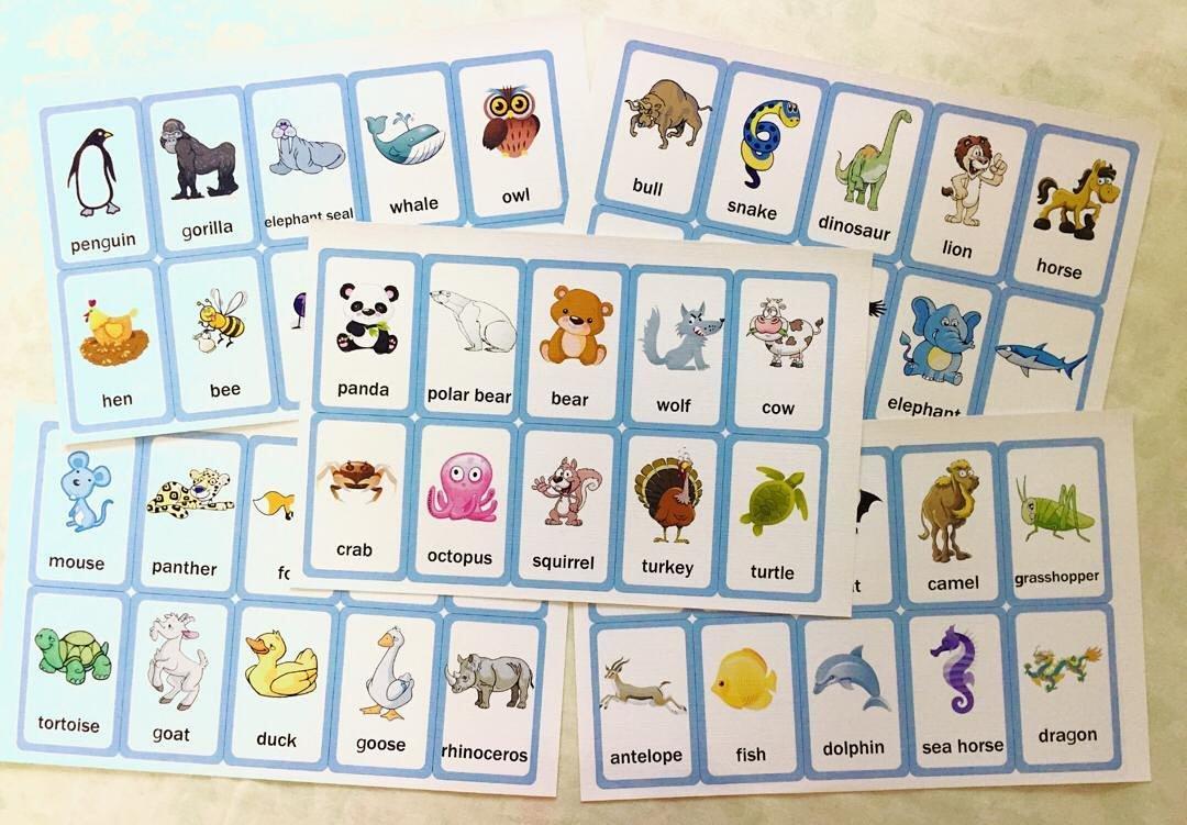 游戏名称:动物英语单词卡片 游戏年龄:2岁以上 游戏人数:不限 能力
