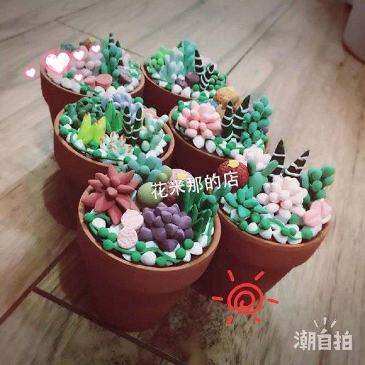 花米那的手工制品 超轻粘土真盆多肉仿真盆栽zakka风